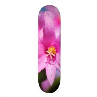 Pink Christmas Cactus Schlumbergera Flower Blossom Skateboards