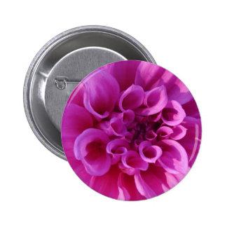Pink Chrysanthemum Buttons
