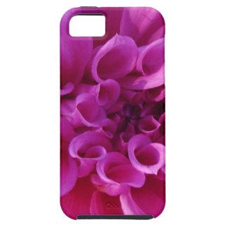 Pink Chrysanthemum iPhone 5 Covers