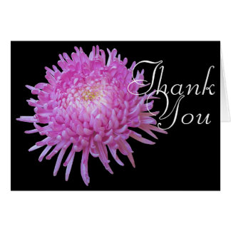 Pink Chrysanthemum Color Chic Mod Floral Thank You Card