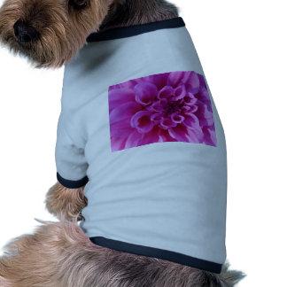 Pink Chrysanthemum Dog Shirt