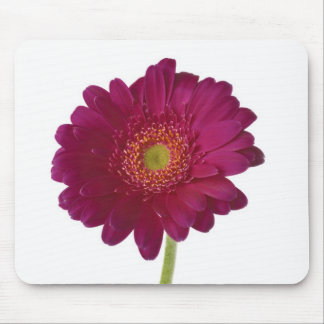 Pink Chrysanthemum Flower Mousepad