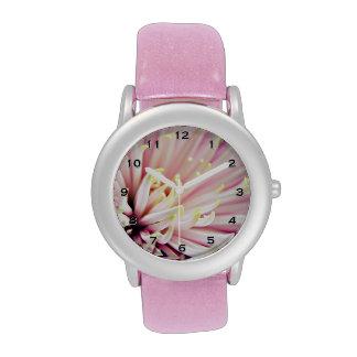 Pink Chrysanthemum flower petals Watch