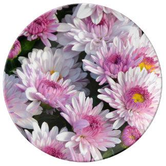 Pink chrysanthemum flowers porcelain plate