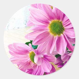 Pink chrysanthemum stickers