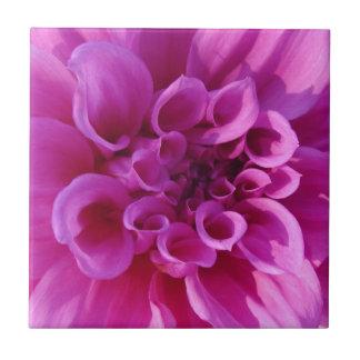 Pink Chrysanthemum Ceramic Tile