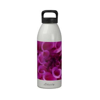 Pink Chrysanthemum Water Bottles