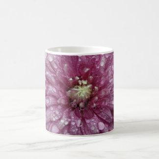 Pink Chrysanthemum with Raindrops Coffee Mugs