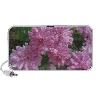 Pink Chrysanthemums Travelling Speaker