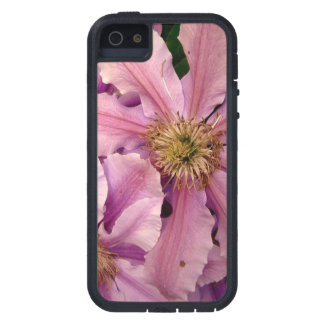 Pink Clematis iPhone 5 Cases