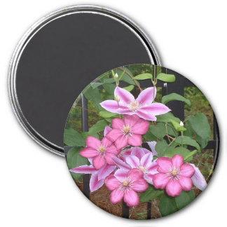 Pink Clematis Floral Design Magnet