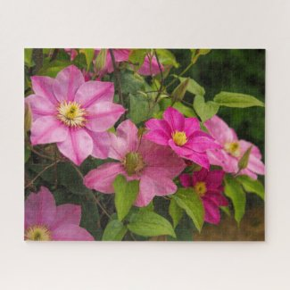 Pink Clematis Floral Jigsaw Puzzle