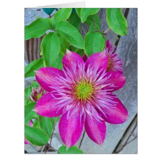 Pink Clematis Flower 2016 Big Greeting Card