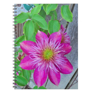Pink Clematis Flower 2016 Note Books