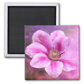 Pink Clematis flower blossom Square Magnet