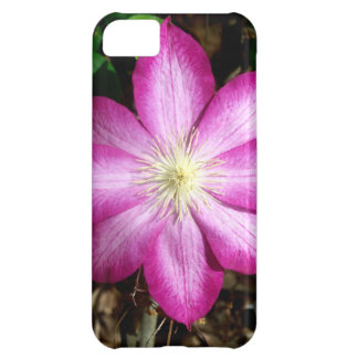 Pink Clematis Flower iPhone 5C Covers
