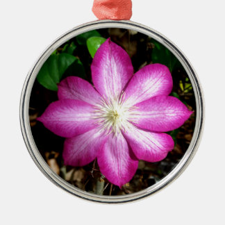Pink Clematis Flower Christmas Ornaments