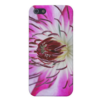 Pink Clematis Flower iPhone 5 Cover
