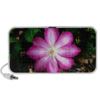 Pink Clematis Flower Travel Speakers