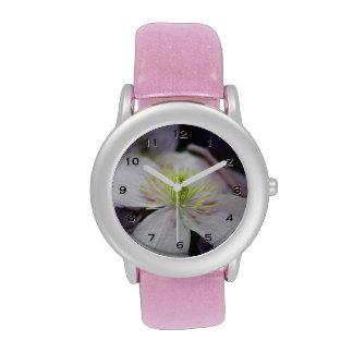 Pink Clematis Flower Watch