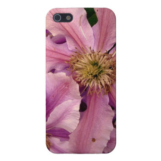 Pink Clematis iPhone 5 Case
