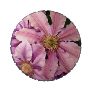 Pink Clematis Candy Tins