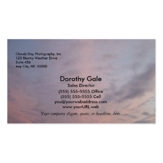 Pink Clouds Pack Of Standard Business Cards