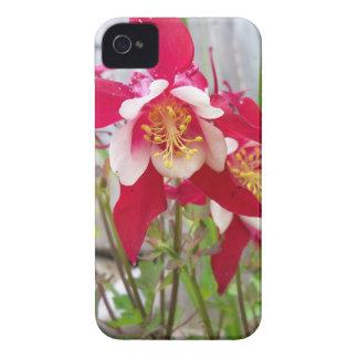 Pink Columbines iPhone 4 Case-Mate Case