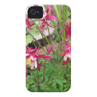 Pink Columbines iPhone 4 Cases