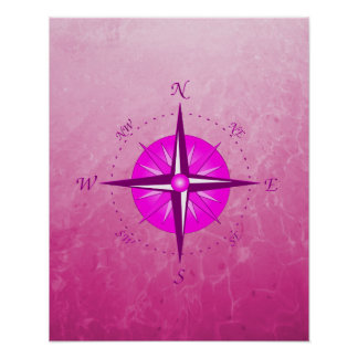 Pink Compass Rose Poster