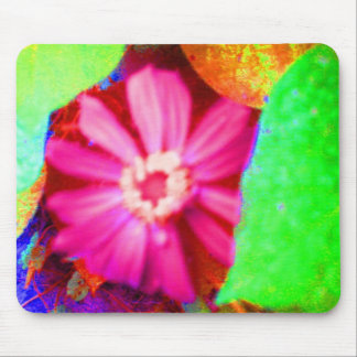 Pink Coreopsis Mouse Pad