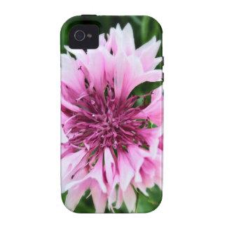 Pink cornflower iPhone 4/4S case