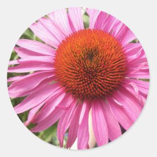 Pink Cornflower Decorative Sticker