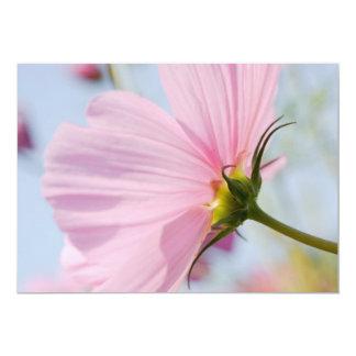 Pink Cosmos • Card / Invitation