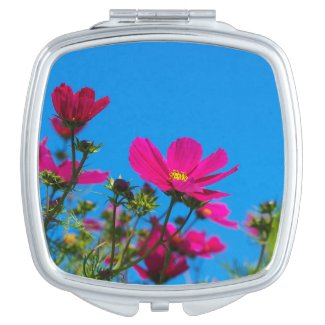 Pink Cosmos Flowers and Blue Sky Compact Mirror