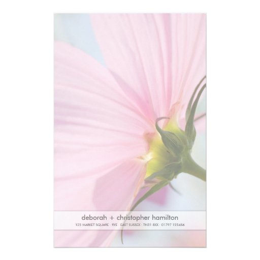 Pink Cosmos • Stationery