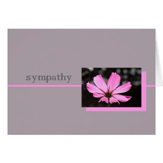 pink cosmos sympathy card