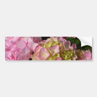 pink  & cream hydrangeas bumper sticker