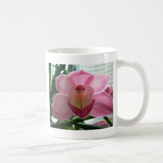 pink cymbidium coffee mug