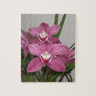 Pink Cymbidium Orchids Puzzle