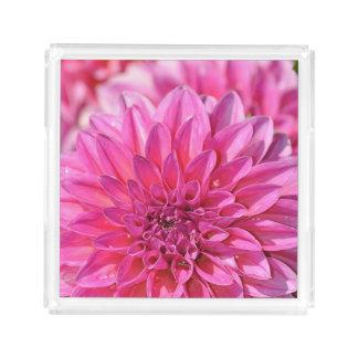 Pink dahlia acrylic tray