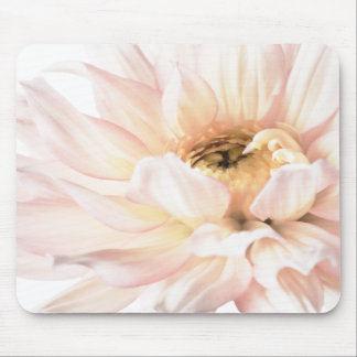 Pink Dahlia Artwork - Keywords: dahlia; beautiful; Mouse Mat
