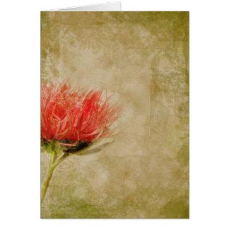 Pink Dahlia Cards
