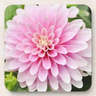 Pink Dahlia Coaster