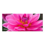 Pink Dahlia DSC4612 Custom Invitation