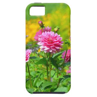 Pink dahlia flower garden iPhone 5/5S cases
