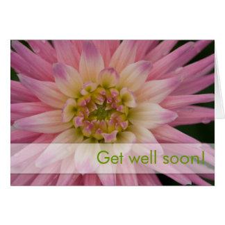 Pink Dahlia • Get Well Card