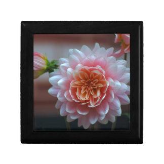 Pink Dahlia Rila.JPG Small Square Gift Box
