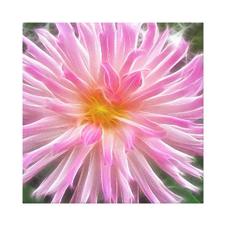 Pink Dahlia Wrapped Canvas Stretched Canvas Prints