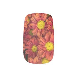 Pink Daisies Nail Art, Summer Fresh Nails Minx Nail Art